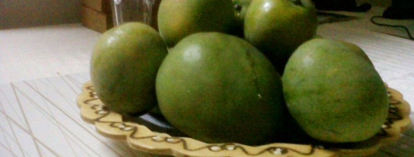 Jamaican mangoes export to USA