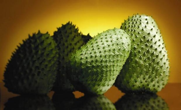 Jamaican soursop benefits