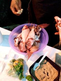 Seasonedlionfish20140317Con