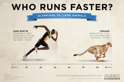 animals-vs-olympians--who-runs-faster