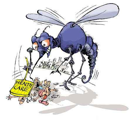 chikungunya and mosquitoes courtesy of outlookindia-com