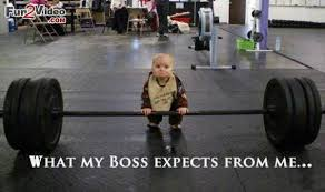 horrible boss - what my boss expects