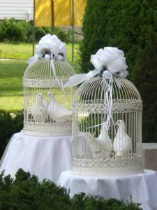 White wedding doves courtesy of discover-southern-ontario-com