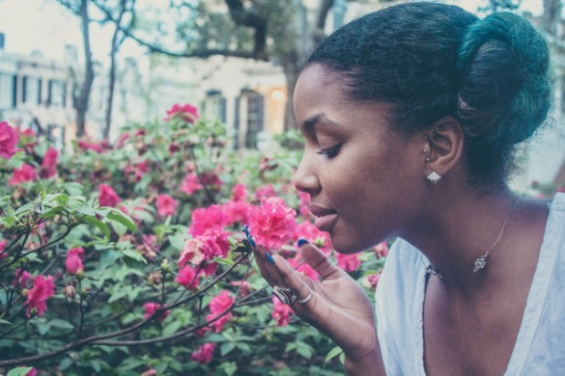 Jamaican Poetry off the Cuff #1 - Hibiscus Memory