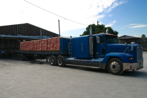 arc manufacturing jamaica trailer with cement